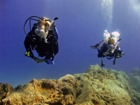 diving tenerife steve suzy abades outer reef IMG_1998